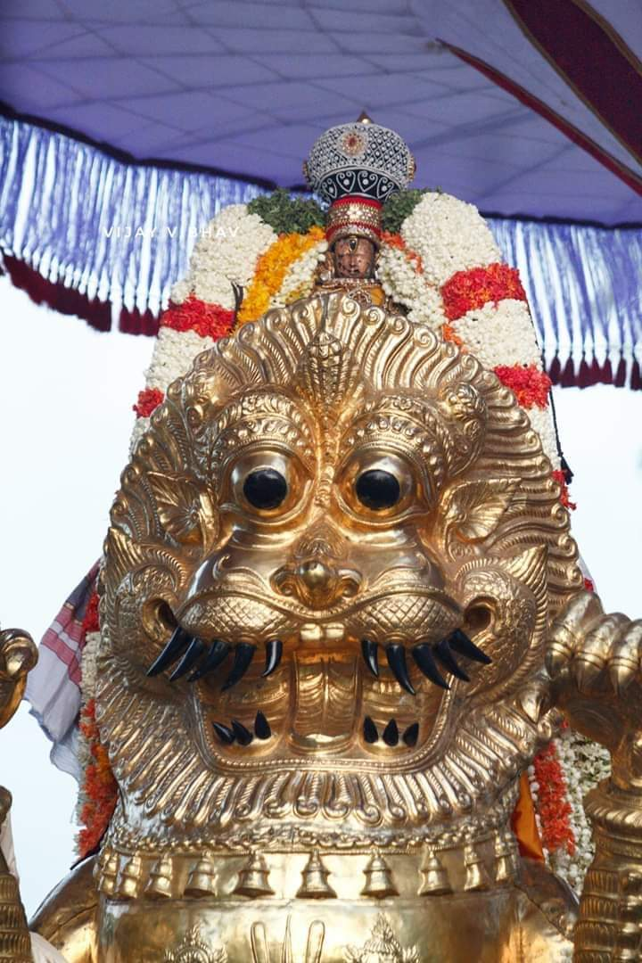 1558156907005-png.7441 Kanchi Devarajan in simha vahanam