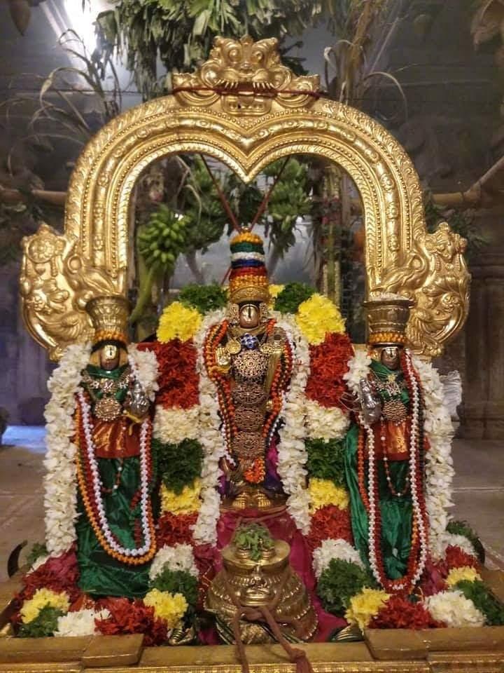 1568098087344-png.7900 Vanamamalai Sri Thodathri Perumal in Pavitara Utsavam
