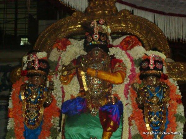 Thiruvallikeni Sri Narasimhar Brahmotsavam