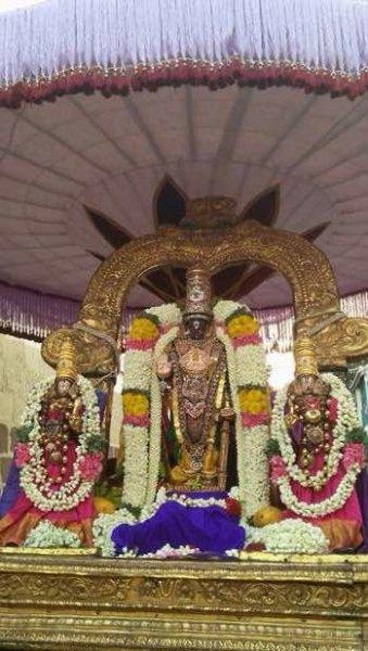 Sri Parthasarathy Vasanthotsavam.jpg