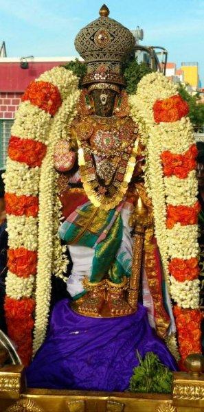 Sri Parthasarathy Purapadu - Kodai Utsavam Day 3, 2017.jpg