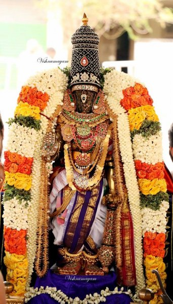 Kodai Utsavam - 4th Day Evening - Sri Parthasarathy Swamy Purappaadu.jpg