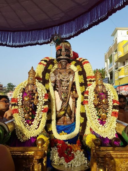 Aadi Amaavasai - Thiruvadipuram Sri Parthasarathy Swamy Purapadu 2017 - Day 7.jpg