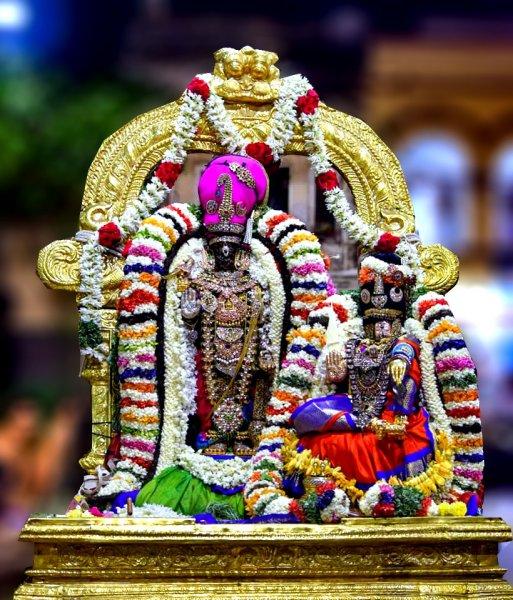 Sri Parthasarathy Swami, Thiruvallikeni, Aadi Pooram