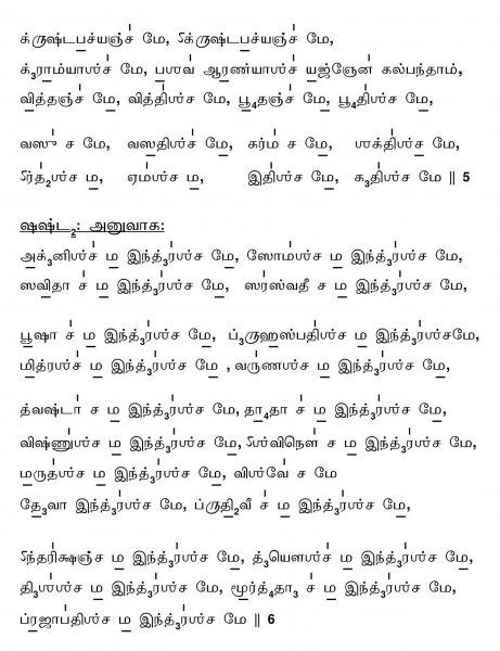 Sri Rudram Chamakam - Tamil script with svara and the