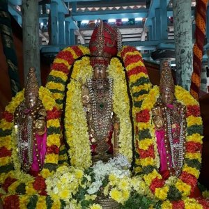 Thiruvallur Sri Vaidhya Veeraraghava Swamy Thai Brahmothsavam, Today Day 7, THIRU THER UTHSAVAM. ( The Holy CHARIOT)