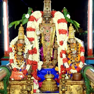 Sri Parthasarathy in theppam Day 1
