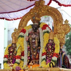 Kaisika Dwadasi - Sri Parthasarathy Swamy Purappaadu